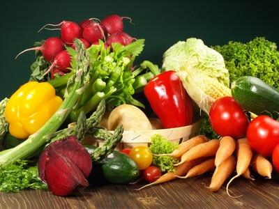 14 aliments toxiques pour le chien