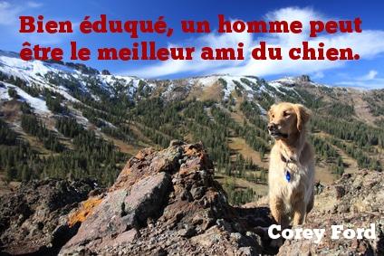 Citation chien - Bien éduqué, un homme peut être le meilleur ami du chien