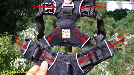 Sécurité Front Range Ruffwear