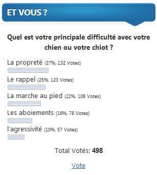 sondage du blog Eduquersonchien