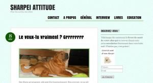 blog sharpei-attitude