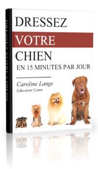dressez votre chien en 15 minutes par jour