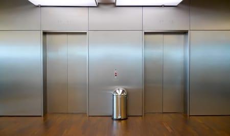 mon chien a peur de l'ascenseur
