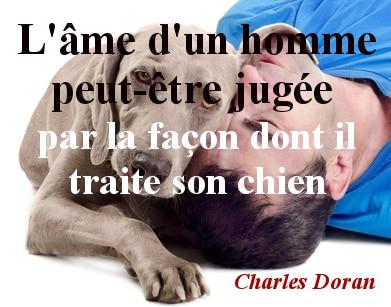 citation chien