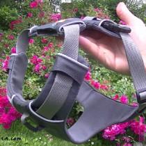 Harnais Front Range Ruffwear