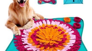 tapis de fouille chien