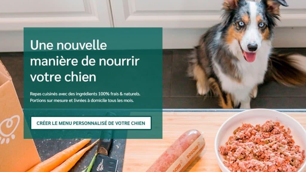 dogchef nourriture pour chien